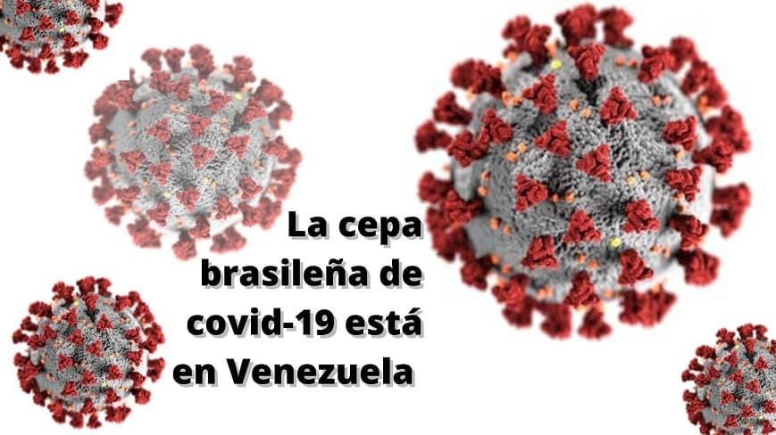 La cepa brasileña de covid-19 está en Venezuela ¿sabes qué implica