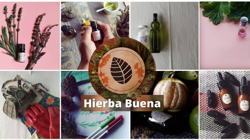 hierba buena emprendimiento venezolano -herbario-nutricion-geocosmetica-imagen-de-productos