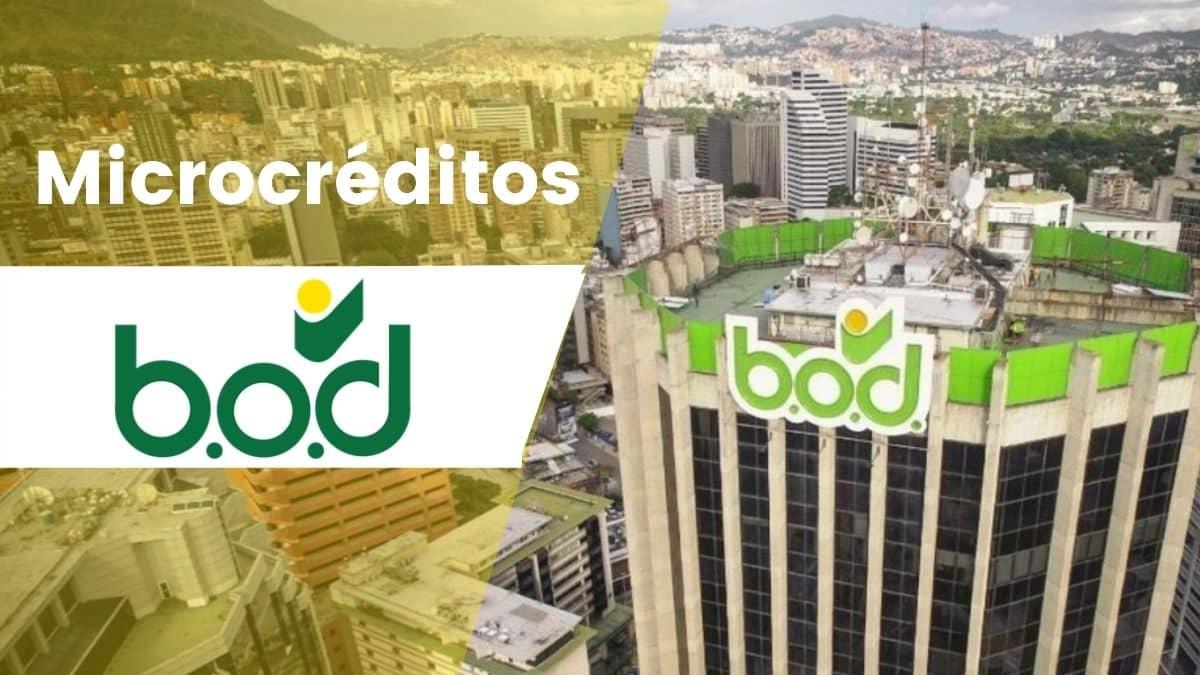 BOD ofrece financiamientos a microempresarios