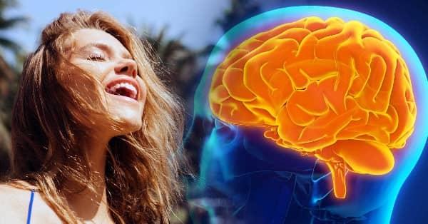 el neurotrasmisor serotonina hace que el cerebro sea mas feliz