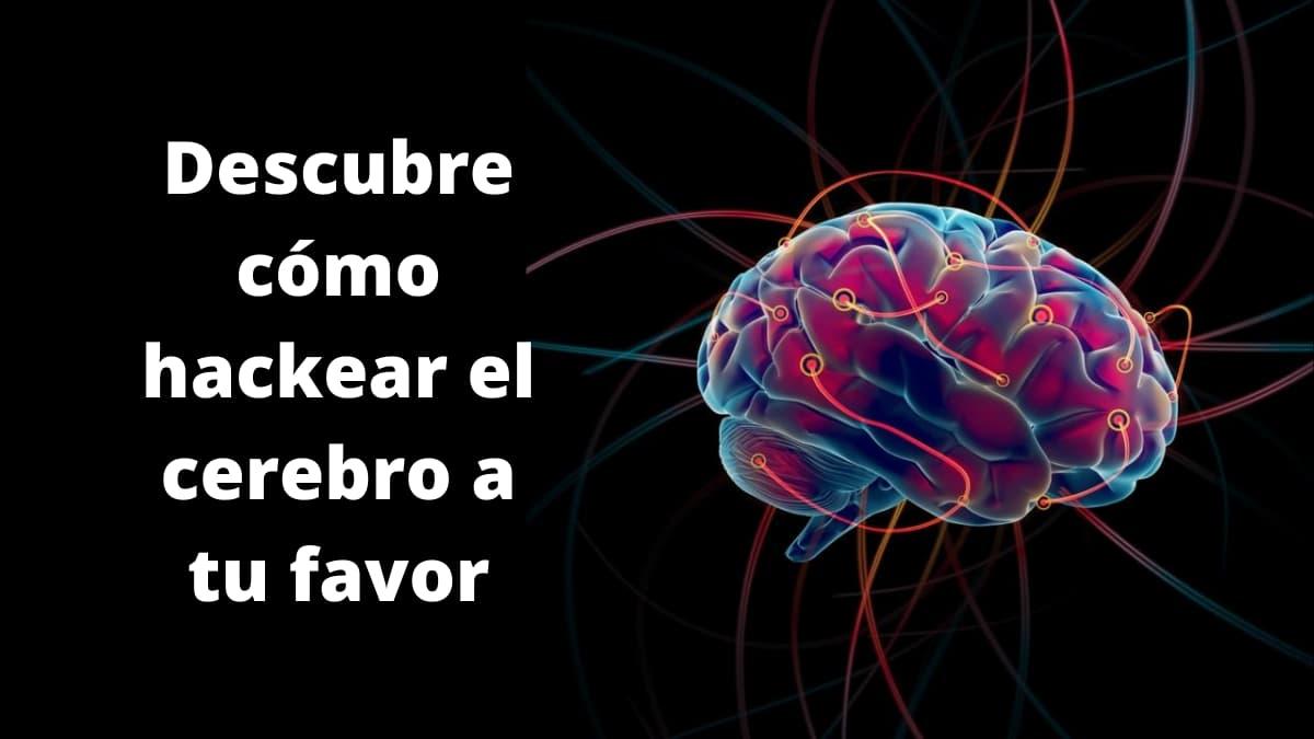 hackeo del cerebro, descubre cómo lograrlo