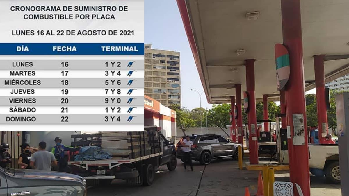 cronograma gasolina